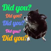 Pet dog stamp3