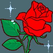 我愛你 / 很多玫瑰(1)