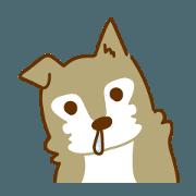 Wolf dog Kota and Ume
