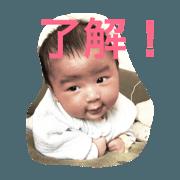 aoshi photo stamps