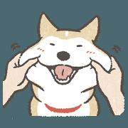 Shiba Inu (Shiba-Dog) stickers v3 tw_rev
