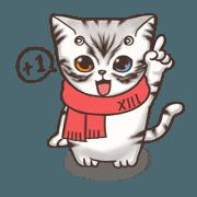 尚貓日常 - 可愛系列
