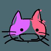 calico cat- qoo chan