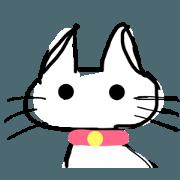 of white cat- sora