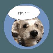 Muku stamp By Key