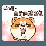 米犬日常 - 阿飄涼爽篇