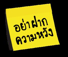 20047873