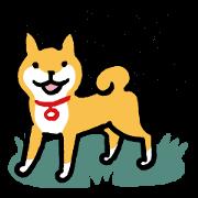 柴犬さんのツボ vol.1