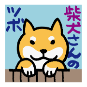 柴犬さんのツボ vol.2