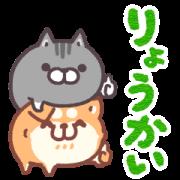 動くボンレス犬とボンレス猫3